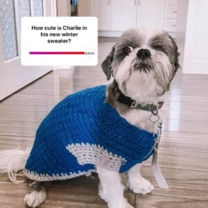 Connie's Creation Pet Sweaters