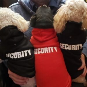 Security Crew Hoodies