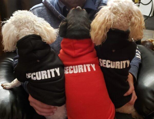 Security Crew Hoodies