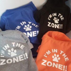 I am in the Zone, multi