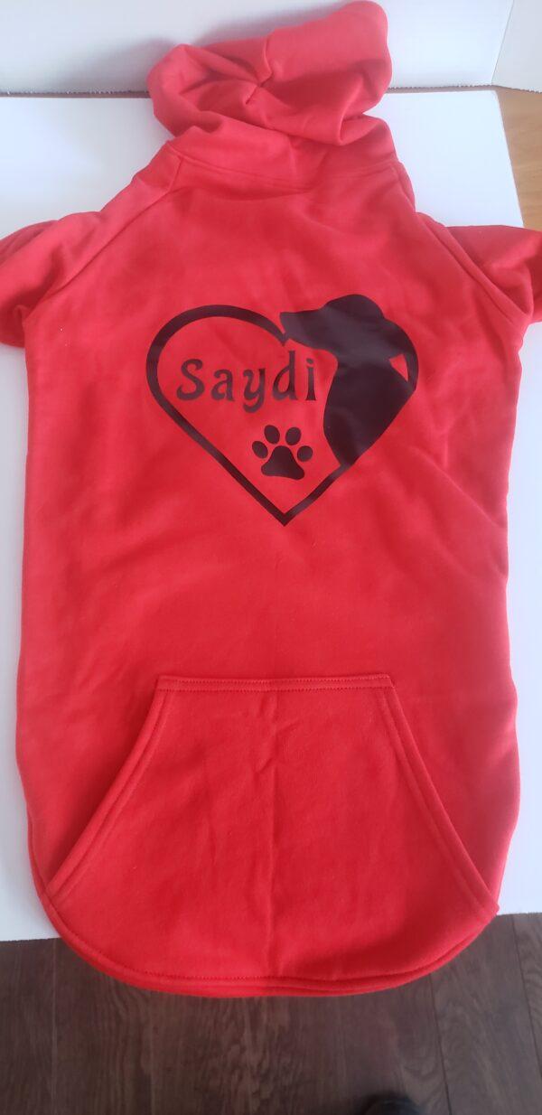 Saydi3