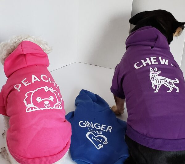 Personalized hoodies2